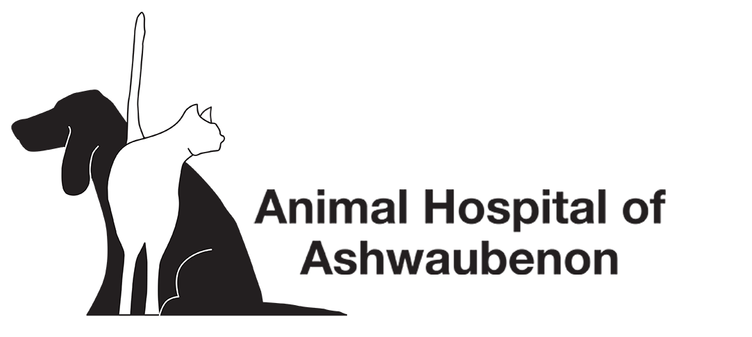 Animal Hospital of Ashwaubenon