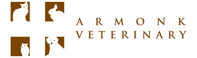Logo for Veterinarians Armonk New York | Armonk Veterinary Hospital