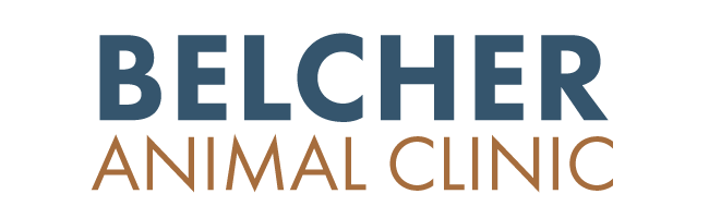 Logo for Veterinarians Clearwater, FL | Belcher Animal Clinic