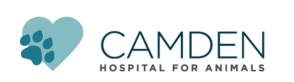 Logo for The Camden Hospital for Animals Rockport, Maine
