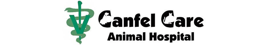 Logo for Veterinarians Houston Texas | Canfel Care Animal Hospital