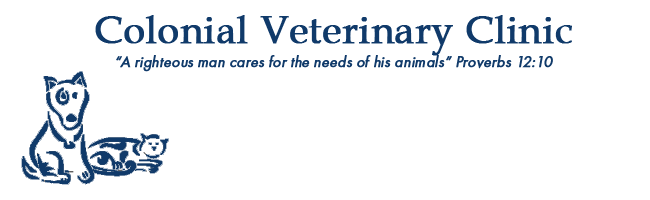 Logo for Veterinarians Plymouth | Colonial Veterinary Clinic