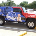 pet taxi service - Dallas TX