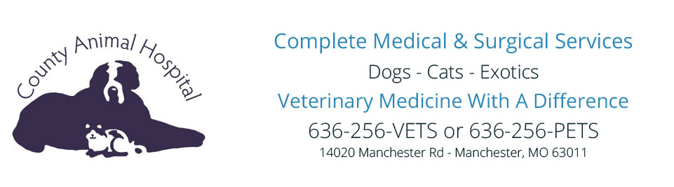 Logo for County Animal Hospital – Veterinarian in Manchester, MO 63011
