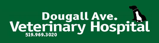 Logo for Dougall Avenue Veterinary Hospital Windsor, Ontario