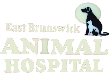 East Brunswick Animal Hospital