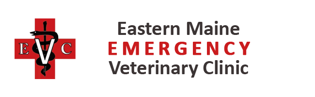 Logo for Eastern Maine Emergency Veterinary Clinic Brewer, Maine