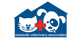 Newcastle & Kirkland Washington Veterinarian | Eastside Veterinary Associates