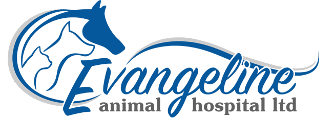 Logo for Evangeline Animal Hospital Lower Saulnierville, Nova Scotia