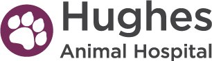 Hughes Animal Hospital