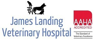 James Landing Veterinary Hospital