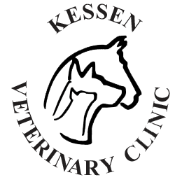 Kessen Veterinary Clinic