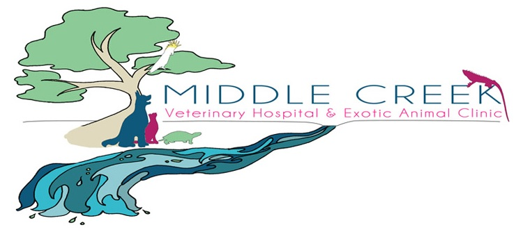 Middle Creek Veterinary Hospital