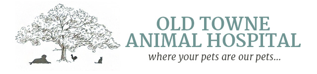 Logo for Veterinarians in Fair Oaks | Old Towne Animal Hospital