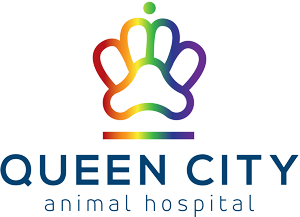 Queen City Animal Hospital