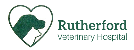 Logo for Veterinarians in Rutherfordton | Rutherford Veterinary Hospital