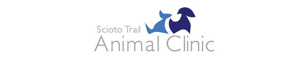 Logo for Veterinarians Portsmouth | Scioto Trail Animal Clinic