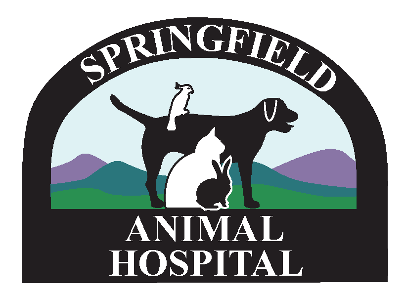 Logo for Veterinarians | Animal Hospital