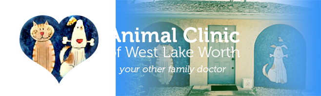 Logo for Veterinarians Lake Worth | Animal Clinic of West Lake Worth