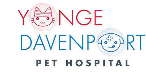 Logo for Yonge-Davenport Pet Hospital, Toronto, Ontario