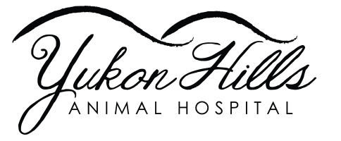 Logo for Yukon Hills Animal Hospital